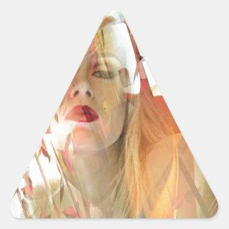 Hueco soñoliento pegatina triangular