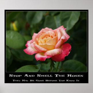 Huela el poster de los rosas
