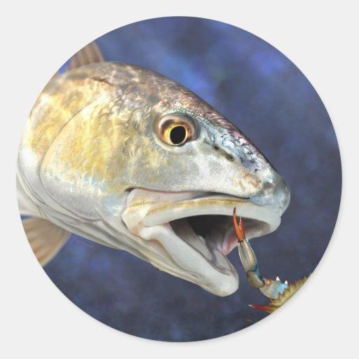 Huelga de los salmones pegatina redonda