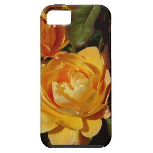 Huelga grandiflora del rosa él rico iPhone 5 cárcasa