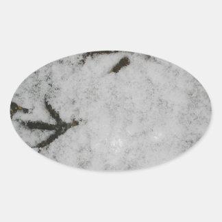 Huellas de la focha en la nieve pegatina de óval personalizadas