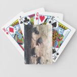 Huellas de la roca baraja de cartas