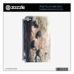 Huellas de la roca calcomanía para iPod touch 4G
