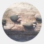 Huellas de la roca etiqueta redonda