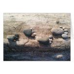 Huellas de la roca tarjetón