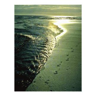 Huellas en la arena Piha isla del norte Tarjetas Publicitarias