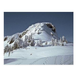 Huellas en la nieve postales