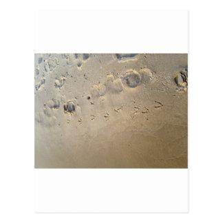 huellas en la playa tarjeta postal