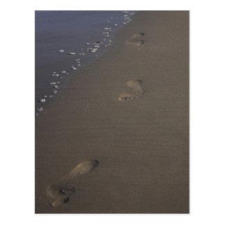 Huellas en la postal de la playa de la arena