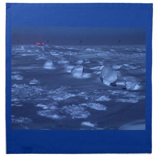 Huellas en South Pole Servilleta De Papel