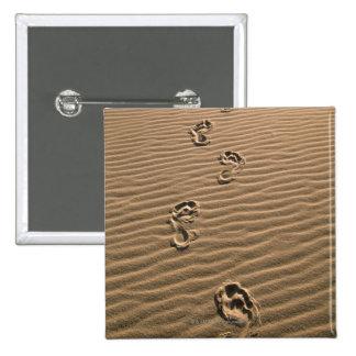 Huellas humanas en la playa arenosa pin cuadrado