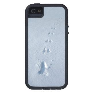 Huellas salvajes del pájaro en nieve funda para iPhone SE/5/5s