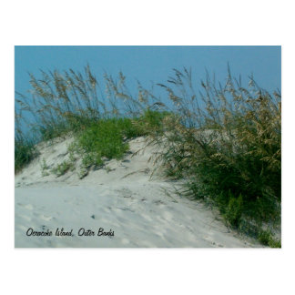 Huellas y dunas de arena, isla de Okracoke, NC Tarjeta Postal