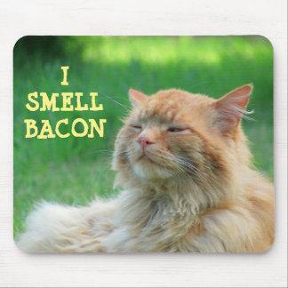 Huelo el gato anaranjado grande del tocino alfombrilla de raton