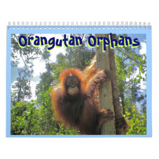 Huérfanos del orangután calendarios