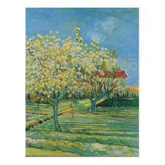 Huerta en el flor, bella arte de Vincent van Gogh Postales