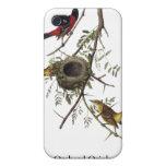 Huerta Oriole - John James Audubon iPhone 4 Protectores