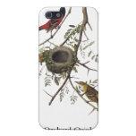 Huerta Oriole - John James Audubon iPhone 5 Fundas
