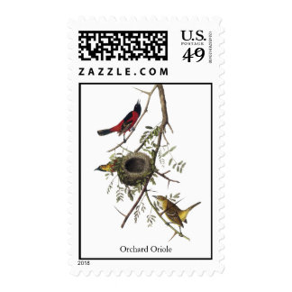 Huerta Oriole - John James Audubon Sello