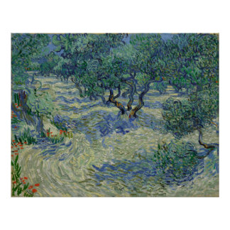 Huerta verde oliva de Vincent van Gogh Póster