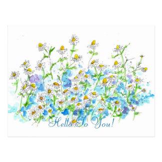 Huerto de la postal del jardín de la margarita de