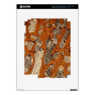Hueso de dinosaurio debajo del microscopio pegatina skin para iPad 3