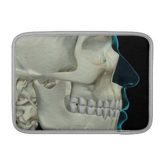 Huesos de la cabeza y de la cara 2 fundas macbook air