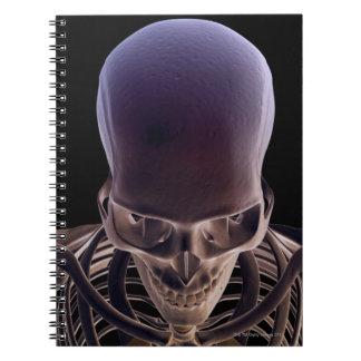 Huesos de la cabeza y de la cara 3 libreta