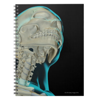 Huesos de la cabeza y del cuello 5 notebook
