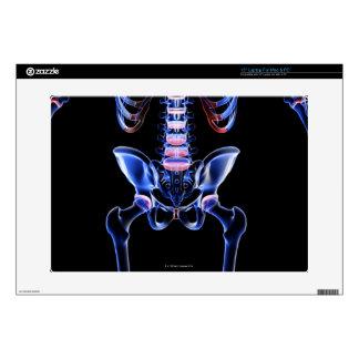 Huesos de la parte inferior del cuerpo 4 calcomanías para portátiles