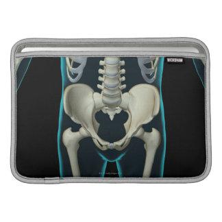 Huesos de la parte inferior del cuerpo fundas MacBook