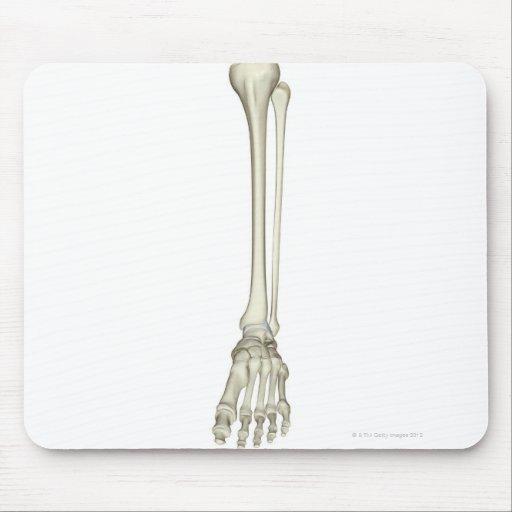 Huesos de la pierna alfombrillas de raton