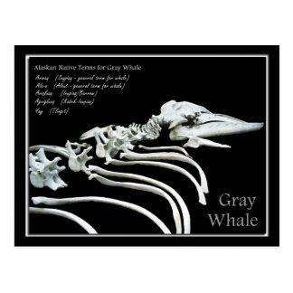 Huesos de una ballena gris de Alaska Postal