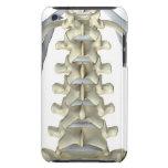 Huesos de vértebras lumbares funda para iPod de barely there