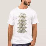 Huesos de vértebras lumbares playera