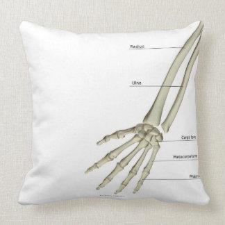 Huesos del antebrazo cojín