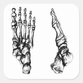 Huesos del foor. humano pegatina cuadrada
