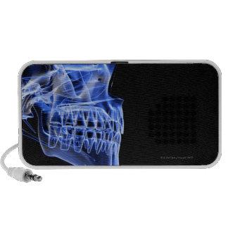 Huesos del mandíbula iPhone altavoz