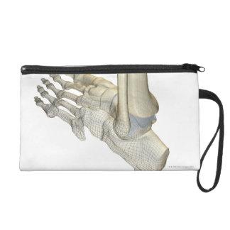 Huesos del pie 3