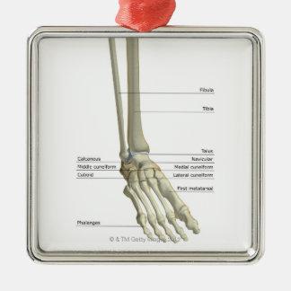 Huesos del pie 6 adorno navideño cuadrado de metal
