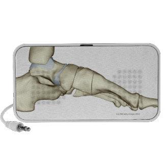 Huesos del pie 7 mini altavoz