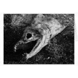 Huesos putrefactos de la cabeza de los pescados tarjeton