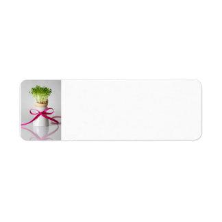 Huevo de Pascua Shell con verdes y la cinta rosada Etiqueta De Remite
