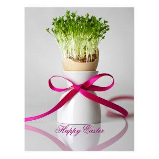 Huevo de Pascua Shell con verdes y la cinta rosada Postal
