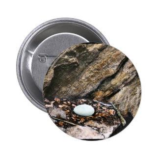 Huevo del cóndor de California Pins