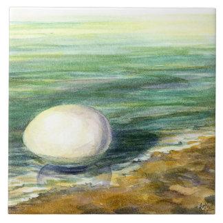 Huevo-En tierra la teja perfecta del acento para