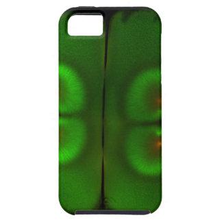 Huevo fertilizado de la rana iPhone 5 Case-Mate funda
