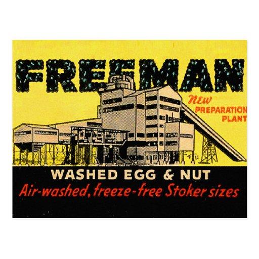 Huevo y nuez industriales de Freeman del kitsch Postal