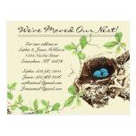 Huevos azules del huevo de los petirrojos en tarjetas postales