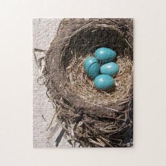 Huevos azules del petirrojo de la jerarquía del rompecabeza con fotos